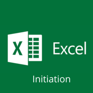 Excel : Niveau 1 : Initiation